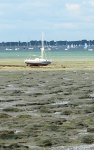 Chichester Harbour - mud, Ruth's coastal walk.
