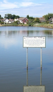 Slipper Mill Pond, Ruth walks around the coast (1)