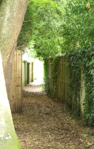 11 - secret footpath, Bognor Regis, Sussex, Ruth's coastal walk.