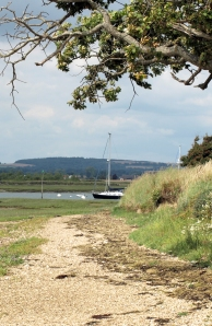 approaching Bosham, Ruths coastal walk.