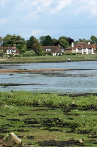 15 Bosham, looking back, Ruth's coastal walk, Sussex.