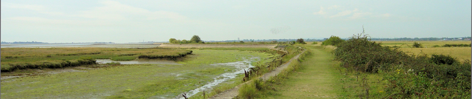 Walking round Farlington Marshes, near Portsmouth. Ruth walking the coast.