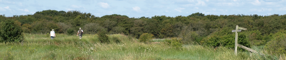 Pagham Harbour, Sussex - walking through it on Ruth's coast walk.