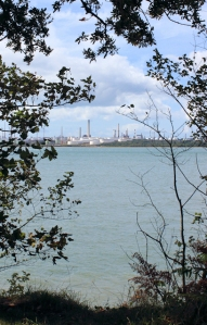 Fawley through trees, Ruth walks around the coastline, Hampshire