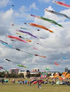 kite flying, Southsea Common, Ruth's coastal walk through Portsmouth