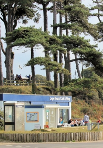 Lepe Beach, cafe and trees, Ruth walks around the coast in The New Forest