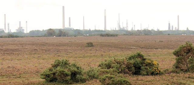New Forest and oil refinery, Ruth's coastal walk