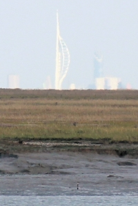 Portsmouth in the distance, from marshes near Lymington. Ruth's coastal walk