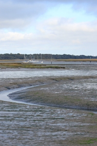 View over mud, Near Lymington, Ruth's coastal walk