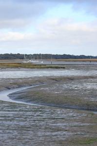 View over mud, Near Lymington, Ruth's coastal walk