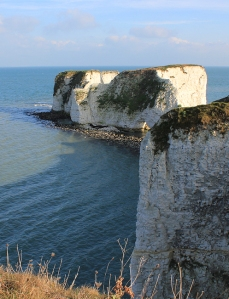 Old Harry rocks, from the top - Purbeck, Ruth's coast walking