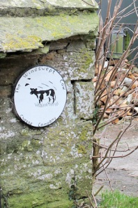 cheese company sign, Ruth's coastal walk, Worth Matravers