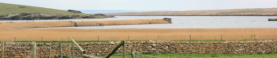 West Fleet, Ruth walking around the coastline of Dorset