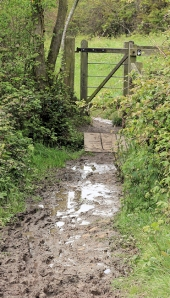 muddy stile - Ruth's coastal walk, trying to get to Lyme Regis