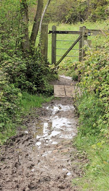 muddy stile - Ruth's coastal walk, trying to get to Lyme Regis
