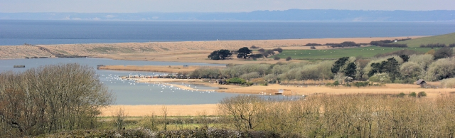 Abbotsbury Swannery, Ruth walking around the coast of Dorset