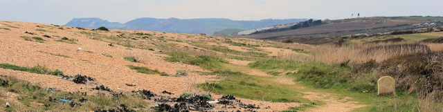 South West Coast path behind shingle bank, Dorset, Ruths coast walk
