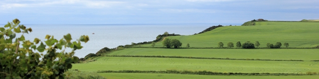flat walking, Ruth's Coastal Walk, Chiselbury Bay, Devon