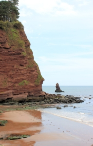 Shag Rock, Ruth's coastal walk, Devon