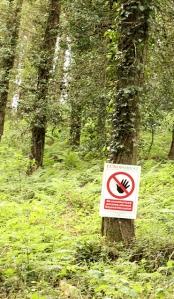 Euroforest sign, woods near Sidmouth, Ruths coast walk