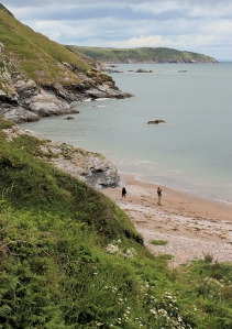 looking back to Sharkham Point, Ruth's coastal walk, Devon