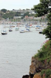 approaching Brixham, along the South West Coast Path, Ruth's coastal walk
