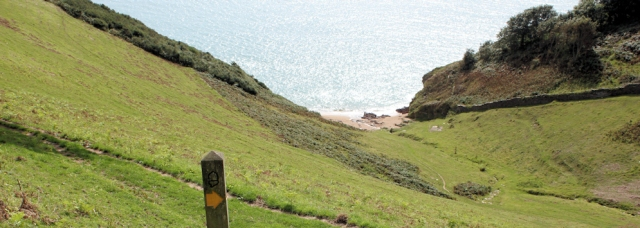 steep slope to sea, Devon - on the South West Coast Path. Ruth's walk.