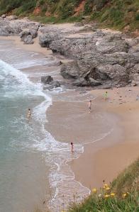 Beach near Start Point, - Ruth's coastal walk, Devon