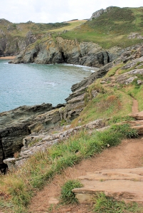 rocky path - Ruth's coastal walk, Devon