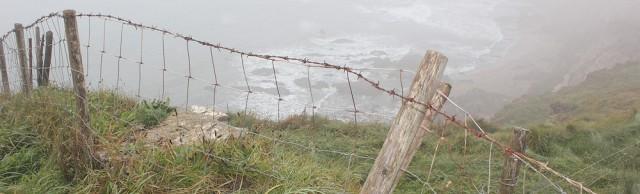 View in the mist, South West Coast Path, Devon. Ruth's coastal walk.