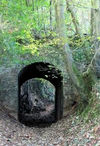 Bridle way under tunnel, Ruth walking around Erme Estuary, Devon