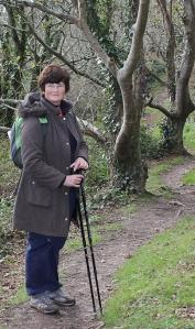 walk through woods, River Erme, Devon