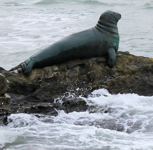 Nelson, the Seal, Looe, Ruths coastal walk