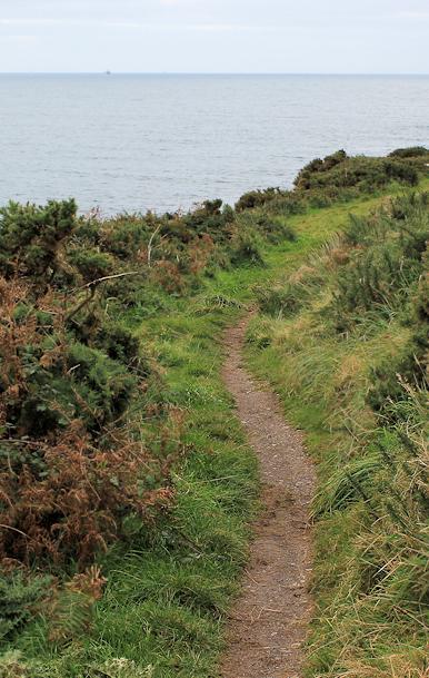 Ruth's walk, Stoke Beach, through bracken