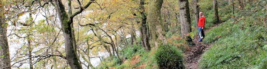 John, walking on Ruth's coastal walk, Passage Woods, Noss Mayo