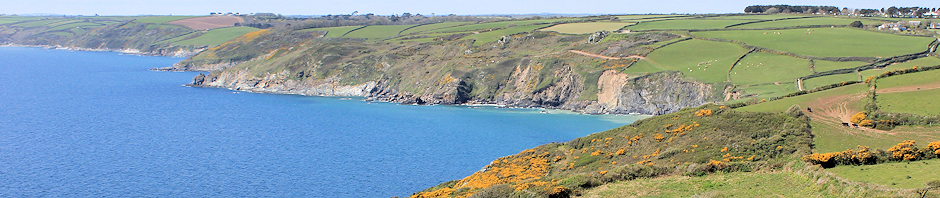 coastal walk, Ruth Livingstone