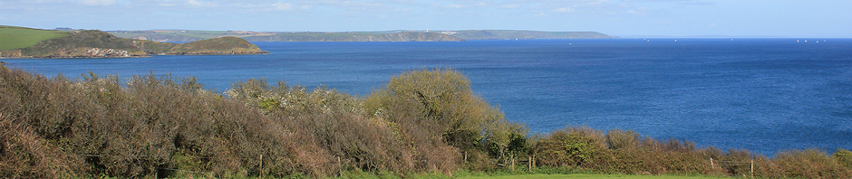 view to Gribbin Head, Ruth's walk around the UK coast