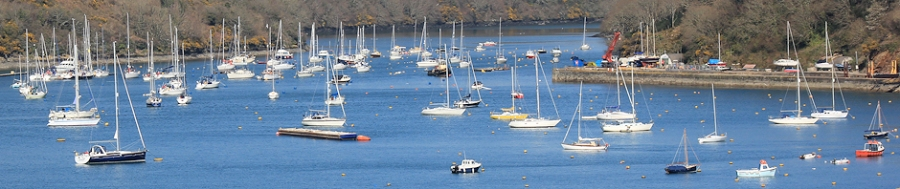 Fowey Harbour, Ruth Livingstone