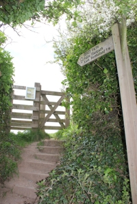 footpath from Caerhays, Ruth on the SW Coast Path
