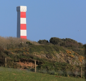Gribbin Tower, Ruth Livingstone