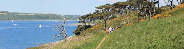 02 walking to St Anthony, Carricknath Point, Ruths coast walk in Cornwall