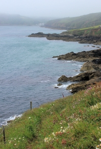 19 Nare Head, near Porthallow, Ruth's coastal walk