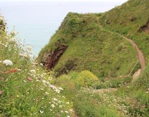 path around Housel Bay, Ruth on the South West Coast Path