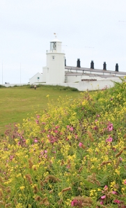 Lighthouse, Ruth's coastal walk, Lizard