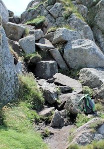 rocks - path disappears, Ruth Livingstone