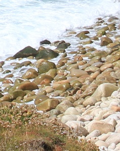 Dinosaur Egg beach, photograph by Ruth Livingstone