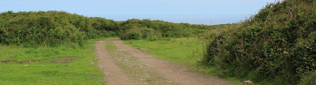 gravel track from Botallack, Ruth's coastal walk