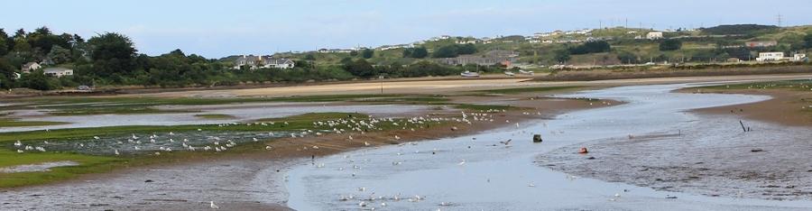 Hayle Estuary Nature Reserve, Ruth on her coastal walk around the UK, Cornwall