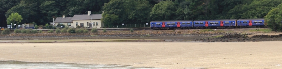 Lelant Station from across The Hayle, Ruth Livingstone