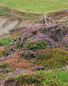 mine shaft covering with flowers, Ruth Livingstone